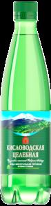Бутылка ПЭТ 0,5 л. с винтовой пластиковой пробкой